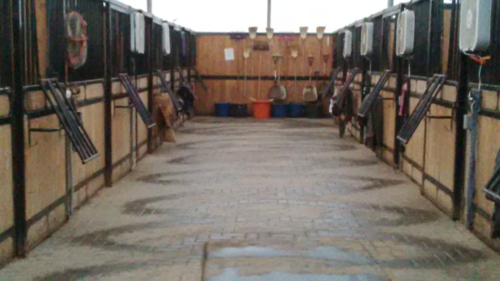 Boarding | Rushmount Equine Sports Ltd