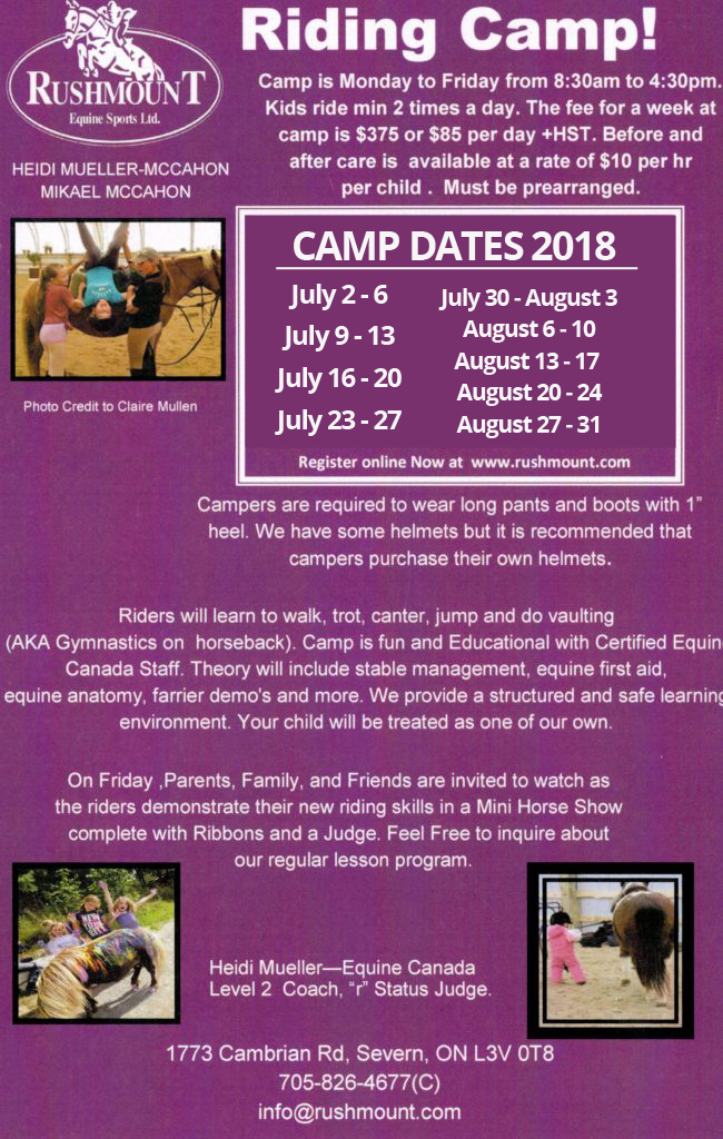 Camps For Kids Rushmount Equine Sports Ltd